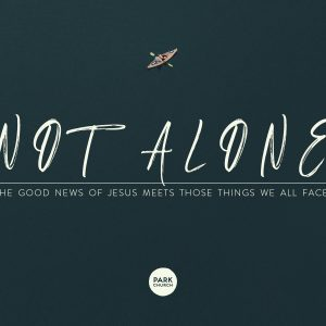 Not Alone: How the Good News of Jesus Meets Us in Those Things We All Face